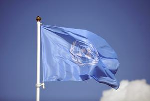 Medlemsländerna kan samarbeta konstruktivt i FN-arbetet. Det är särskilt viktigt i en tid av global oro. Foto: TT