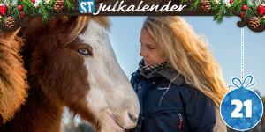 Viktoria Forsberg driver Riiby gård i Bergeforsen med 30 islandshästar, varav 23 är hennes egna och övriga är inackorderade.