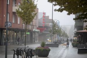 I en rapport kom det fram att de mindre städerna har den högsta tillväxten. Bland städerna som ökade mest under 2018 återfinns framför allt mindre städer, med Sandviken, Kinna och Varberg i topp.