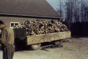Kroppar funna vid krematoriet i koncentrationslägret Buchenwald 1945. Foto: Parke O. Yingst