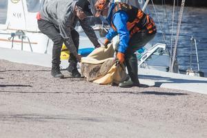 Efter cirka 30 minuter kom en skåpbil som skulle föra rådjuret till Måsberget där det släpptes ut i naturen.