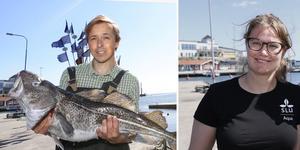 Torsken är stor och välmående i Ålands hav medan den är liten, mager och full med mask i resten av Östersjön. Forskare Ulf Bergström och doktorand Isa Wallin ska ta reda på varför.