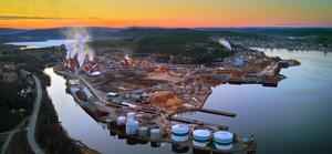 Domsjöfabriken.  Utsläpp som ger miljöproblem kan i stället förvandlas till en ny inkomstkälla för massabruken.  Foto: Markus Sandin