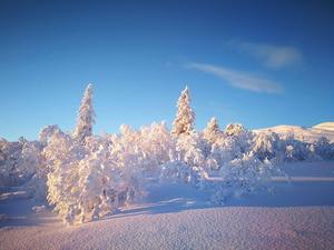 Detta foto togs av Joakim Holmqvist. Det föreställer Renfjället i Edsåsdalen och postades på Edsåsdalens facebook-sida: www.facebook.com/edsasdalen/