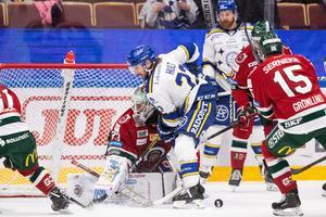 Foto: Daniel Eriksson/Bildbyrån