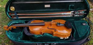 Fiol är ett vanligt instrument inom folkmusiken.