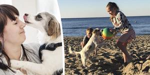 Karoline Bergström tog tillsammans med sin familj hem gatuhunden Moa från semestern i Turkiet.