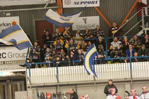 Hemmapubliken stortrivdes i Borlänge ishall på fredagskvällen när BHF säkrade sin plats i kvalserien till allsvenskan.