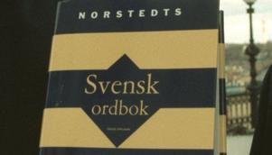 Kunskaper i svenska är förolämpande och dumt,  säger Kick Leijnse. Foto: Mark Earthy