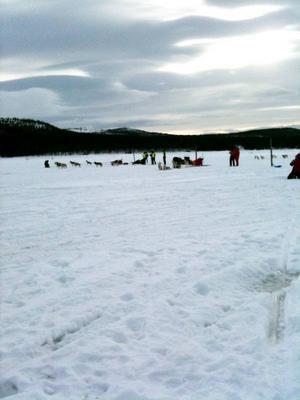 Skön vila I Lofsdalen.Foto: Annica Korsby