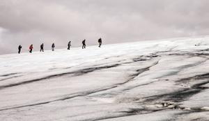 Att göra en dagstur i replag på Folgefonnaglaciären eller någon annan av fjordlandets stora glaciärer är kul.   Foto: Johan Öberg
