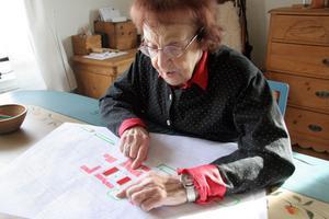 Karin Granér har många synpunkter på centrumutveckling.