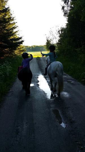 Systrarna Maja och Greta, 6 och 3 år, på sina hästar Daisy och Nisse.