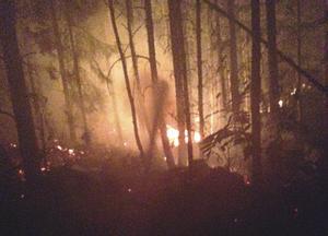 Räddningstjänstens bild från elden som härjade på Korpberget och som hotade Norberg.