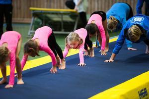 Flest tryck är det få börja med gymnastik i Borlänge är det bland barn i åldrarna 7-10 år, men det finns ingen åldersgräns uppåt och klubben har till och med gymnaster som är över 90 år.