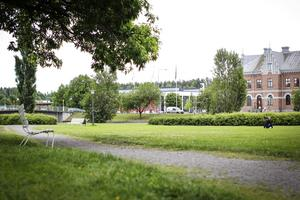 Redan nästa år kan Gurkparken få ett helt nytt utseende.