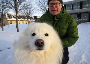 Lars-Åke Lindström med Vitash, ÖstersundKenneln i Nordviken döpte honom. För varje kull väljer de en ny bokstav.Vitash är en Samojedhund och rasen härstammar från Samojedfolket.