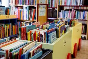 Biblioteken i Enviken, Grycksbo, Sundborn och Sågmyra stängs första december.