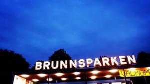 Insändarskribenten  funderar på en inte Brunnsparken i Örebro vore en bra plats för ett bibliotek för böcker från olika dödsbon.