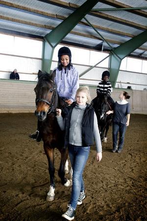 Här kommer Hästen Robby med ryttaren Devora Abraham och ledaren Elsa Petrusson