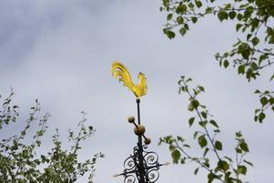 GLÄNSTE. Tuppen på klockstapeln vid Soldatkyrkan glänste lite extra i solskenet i går när han fick ta emot sitt pris  i tävlingen Årets kyrktupp.