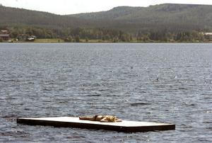 Flytbryggan är inte ny men bra för den som vill sola i lugn och ro en stund.
