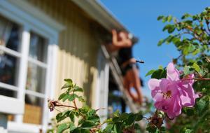 Om man älskar sol måste detta var det perfekta sommarjobbet!Skrapa, olja och måla farmors hus!
