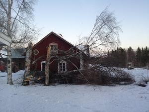 Så här såg det ut efter att stormen Dagmar dragit fram./Läsarbild