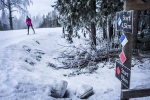 Drömmer du om skidåkning? Det kan snart vara möjligt på Östersunds skidstadion, när konstsnön läggs ut. Bilden är från i januari i år.