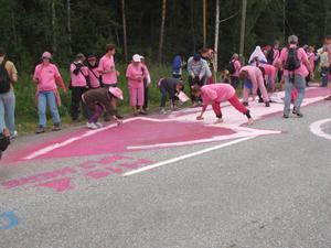 Grön Ungdom Gävle är på plats i Norrbotten föra att demonstrera mot det militära övningsområdet NEAT.