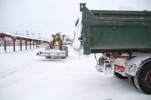 När snön röjts undan från vägarna städas den upp och lastas på lastbilsflak innan den transporteras iväg till snötippen på återvinningscentralen.