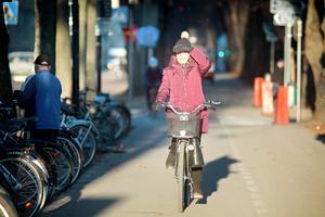 Antalet cyklister har minskat vid flera av kommunens mätpunkter i staden – men exakt vad det beror på är oklart.