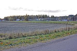 Jordbruksmarken mellan Ringvägen och Fågelvägen, mitt emot Zigenarbacken, har tidigare föreslagits som en tänkbar placering för en ny låg- och mellanstadieskola i Köping. (Arkivbild)
