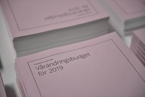 Regeringens ekonomiska vårproposition presenterades i förra veckan. Foto: Naina Helén Jåma/TT