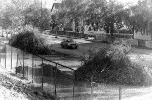 1978 var det dags att fälla fler björkar längs Rådhusgatan. En ny infart på E 75 skulle byggas nedanför dåvarande I 5.