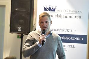 Jon Hansson, VD för Siljan Timber, förklarade företagets behov av att kunna flyga in kunder.