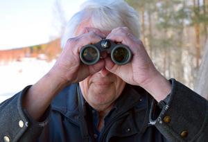Staffan Müller spanar – och tycker att framtiden ser mörk ut för naturen och mångfalden. Men han ger inte upp, utan fortsätter att som pensionär jobba för naturen.