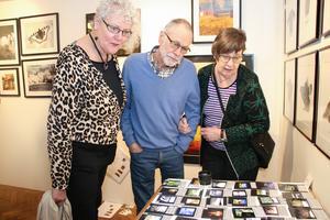 Rutan Ahlén från Nynäshamn var på festivalen för första gången tillsammans med Sten och Kerstin Axelsson från Mullhyttan. De tittade bland annat på bilder i mindre format.
