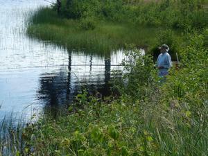 Fisketävlingen bjöd på vackert väder men också en hel del knott.