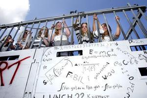Naturvetarna kommer snart att släppas fria efter tre år bakom galler, åtminstone enligt deras tema.
