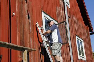 Hembygdsföreningens medlemmar har mycket arbete med att sköta om Kungsudden, som här förra sommaren när bland andra Janne Carlsson målade hela huset med Falu rödfärg och traditionella metoder.
