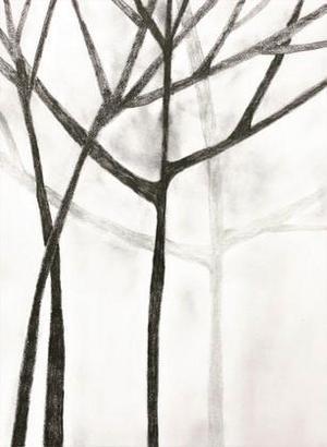 Grå jag gick stigen mot skogen idag.höll huvudet högtoch låtsades vara jag som jag är.färgen var grå som ögonblicket innan mörkret och träden stod där som om de väntat.en del i givaktandra bugande med årsringarunder brusten bark.och jag begravde fågeln. Eva-Lotta Susanne Persson, FagerstaMärk hur alla fåglar tystnar den natten är jag en skog utvikt mellan myrar omfamnad av nio älvors oskuldden natten är jag en skog högrest tålmodig iklädd nattlinne av ugglors fjädrarden natten är jag en skogdu går på mina rötter du går förbi migdu går igenom mig Eva-Lotta Susanne Persson, Fagersta