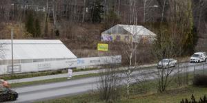 Det är växthuset till vänster samt ytterligare en byggnad som ska rivas och ge plats för en byggvaruhandel med lager. I området låg tidigare Keuls handelsträdgård.
