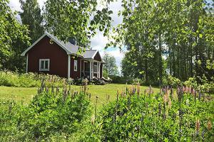 Fritidshuset ligger idylliskt vid  skog och vatten, men saknar vatten och avlopp. Bild: Ekeby mäklare