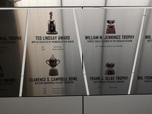 2011 vann Daniel Sedin Ted Lindsay Award, priset till den bästa spelaren framröstat av ligans spelare.