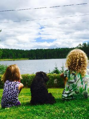 Barnbarnet Ida Elander, dvärgschnausern Buster och barnbarnet Ellie Elander en sommarkväll vid sommarhuset i Rämshyttan. Foto: Catarina Kanesäter