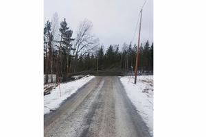Royne Gustafsson i Lönsvik fick ett träd över bilen och ett över vägen. Foto: Läsarbild/Royne Gustafsson