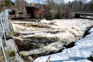 I Kolningån i Enviken forsar vattnet med fullt kraft.