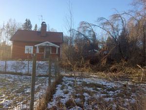 Köksfönstret på huset gick sönder, troligen av lösa grenar som yrde omkring när det väldiga lärkträdet dunsade ned i marken. Bild: Privat