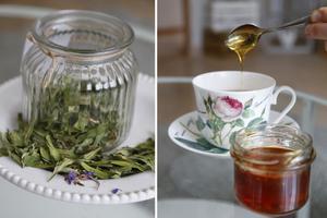 Galet gott rallar-te och ljuvligt len honungen av maskrosor gör du utan större ansträngning.